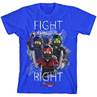 LEGO Ninjago Big Boys' Ninja Fight Tee