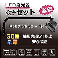 激安! IP65PSE LED投光器30W アームセット (昼光色, 60cmアーム)【TL-LED-30W-WH-60set】