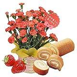 ほんまもん屋 母の日 ギフト カーネーション 鉢植え 5号鉢 オレンジ ときめいて 苺 ロール ケーキ セット
