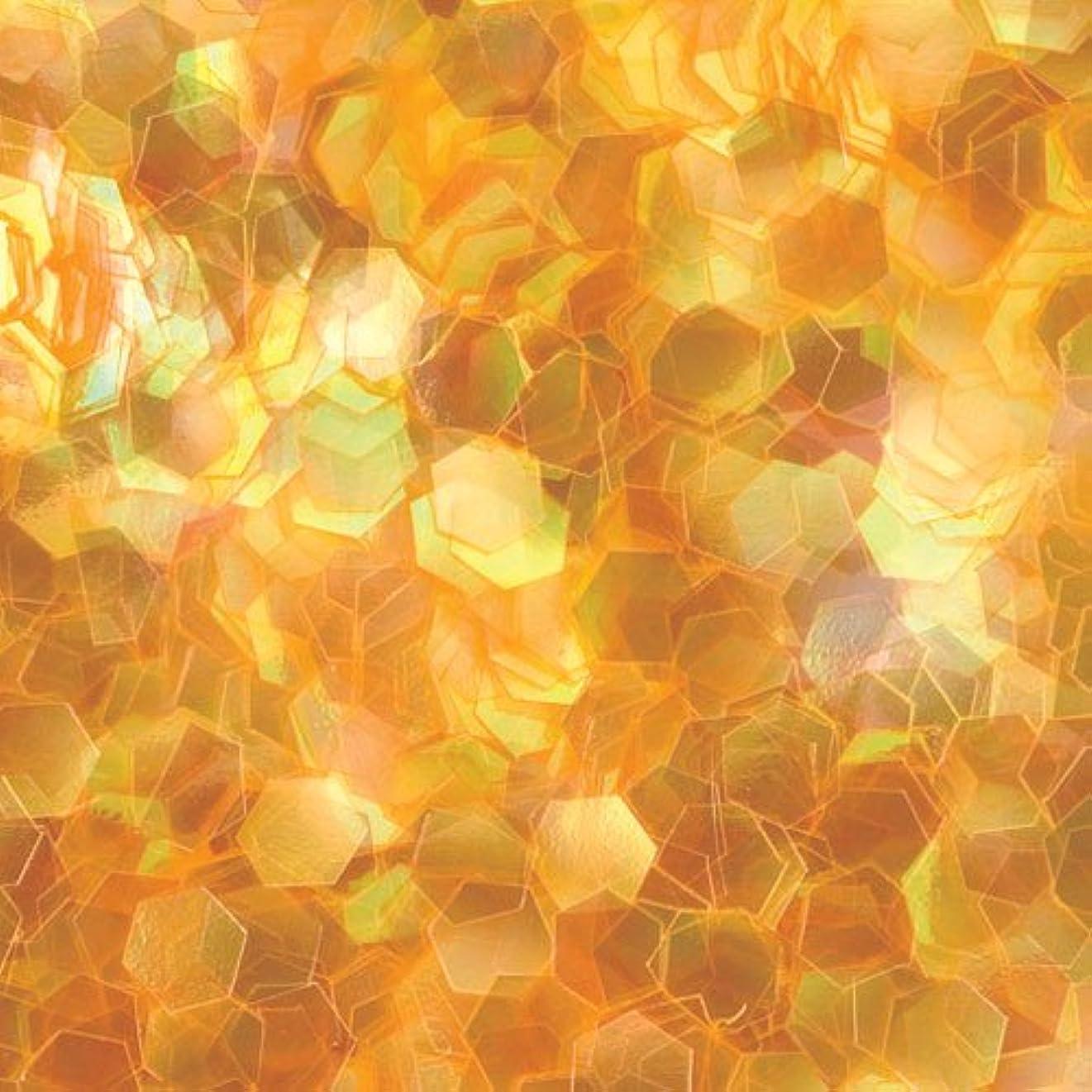 期限切れ平等石鹸ピカエース ネイル用パウダー 六角オーロラG 1mm #302 オレンジ 0.5g