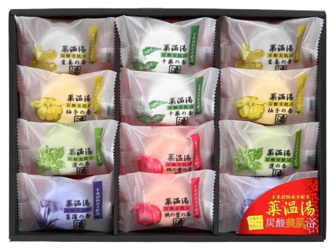 フルーツ野菜必需品タイプライター薬温湯 炭酸美肌浴セット POD-20