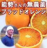 有機JAS法準拠 無農薬 訳あり ブラッドオレンジ 5kg 有機栽培 能勢さんのブラッドオレンジ 国産