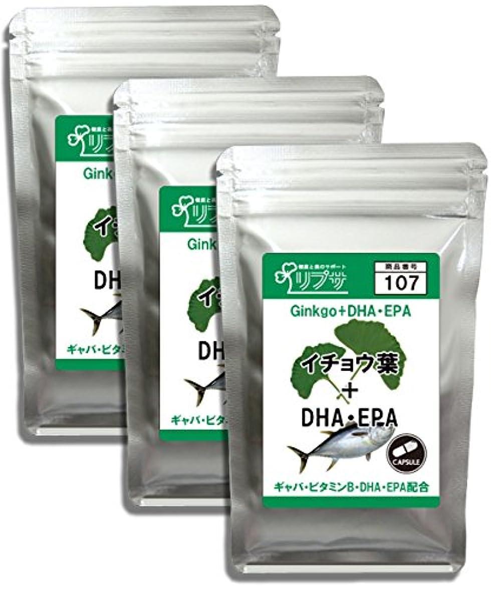 アコード玉後ろ、背後、背面(部イチョウ葉&DHA?EPA 約1か月分×3袋 C-107-3