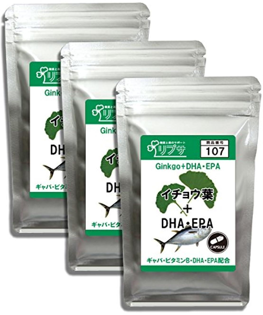 廃棄する星紀元前イチョウ葉&DHA?EPA 約1か月分×3袋 C-107-3