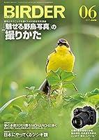 BIRDER(バーダー)2017年6月号 「魅せる野鳥写真」の撮りかた
