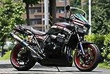 ストライカー(STRIKER) エアロデザイン アンダーカウル 黒ゲル ZRX1200 DAEG[ダエグ](09-) SAD-UC101B