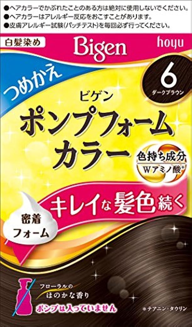 ホーユー ビゲン ポンプフォームカラー つめかえ剤 6 (ダークブラウン) 1剤50mL+2剤50mL [医薬部外品]