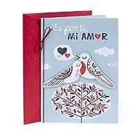 Hallmark Vida Valentine's Day Greeting Card for Wife (Two Birds) [並行輸入品]