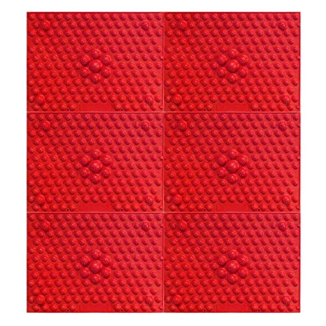 不幸援助する牛肉疲れsirazu(足踏みマット)ピンク6枚セット (赤)
