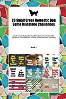20 Small Greek Domestic Dog Selfie Milestone Challenges: Small Greek Domestic Dog Milestones for Memorable Moments, Socialization, Indoor & Outdoor Fun, Training Book 1