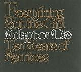 Adapt Or Die: Ten Years of Remixes 画像