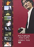 PICTURIZE[DVD]