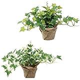 人口観葉植物 フェイクグリーン ミニアイビー2種セット H20㎝ 光触媒
