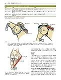 筋骨格系のキネシオロジー 原著第3版 画像