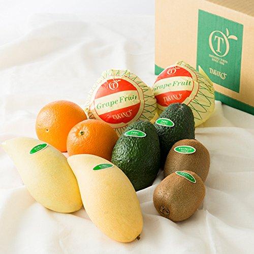 新宿高野 Day Fruit デイフルーツ デイフルーツセットA #29100 [グレープフルーツ/オレンジ/キウイフルーツ/タイマンゴー/アボカド 各2個入り] フルーツ 果物 つめあわせ セット