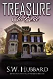Treasure in Exile: a twisty, read-all-night mystery (Palmyrton Estate Sale Mystery Series Book 4) (English Edition)