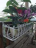 【 お庭デザインの幅が広がる 】 壁面 取付 アイアン プランター 鉢植え ラック ガーデニング 壁掛け 花 植物 (Cタイプ ホワイト)