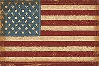 USA Strong American Flag by Pela Studios 36x24 Folk Art print Poster Primative Stars & Stripes 【Creative Arts】 [並行輸入品]