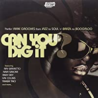 Can You Dig It [12 inch Analog]