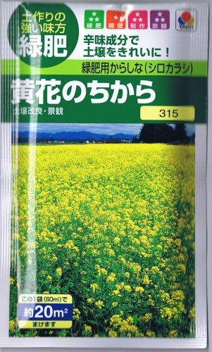 【種子】緑肥用からしな 黄花のちから 60ml