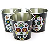 Fun Express - Day Of The Dead Metal Pails (dz) for Halloween - Party Supplies - Containers & Boxes - Metal Containers - Halloween - 12 Pieces