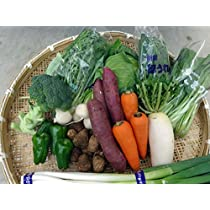 野菜福箱 季節の旬の野菜を8種類以上 千葉県産 茨城県産 地場産 福箱 無料発送