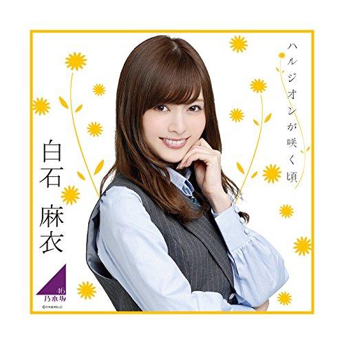 乃木坂46  2017年 個別卓上カレンダー 白石麻衣