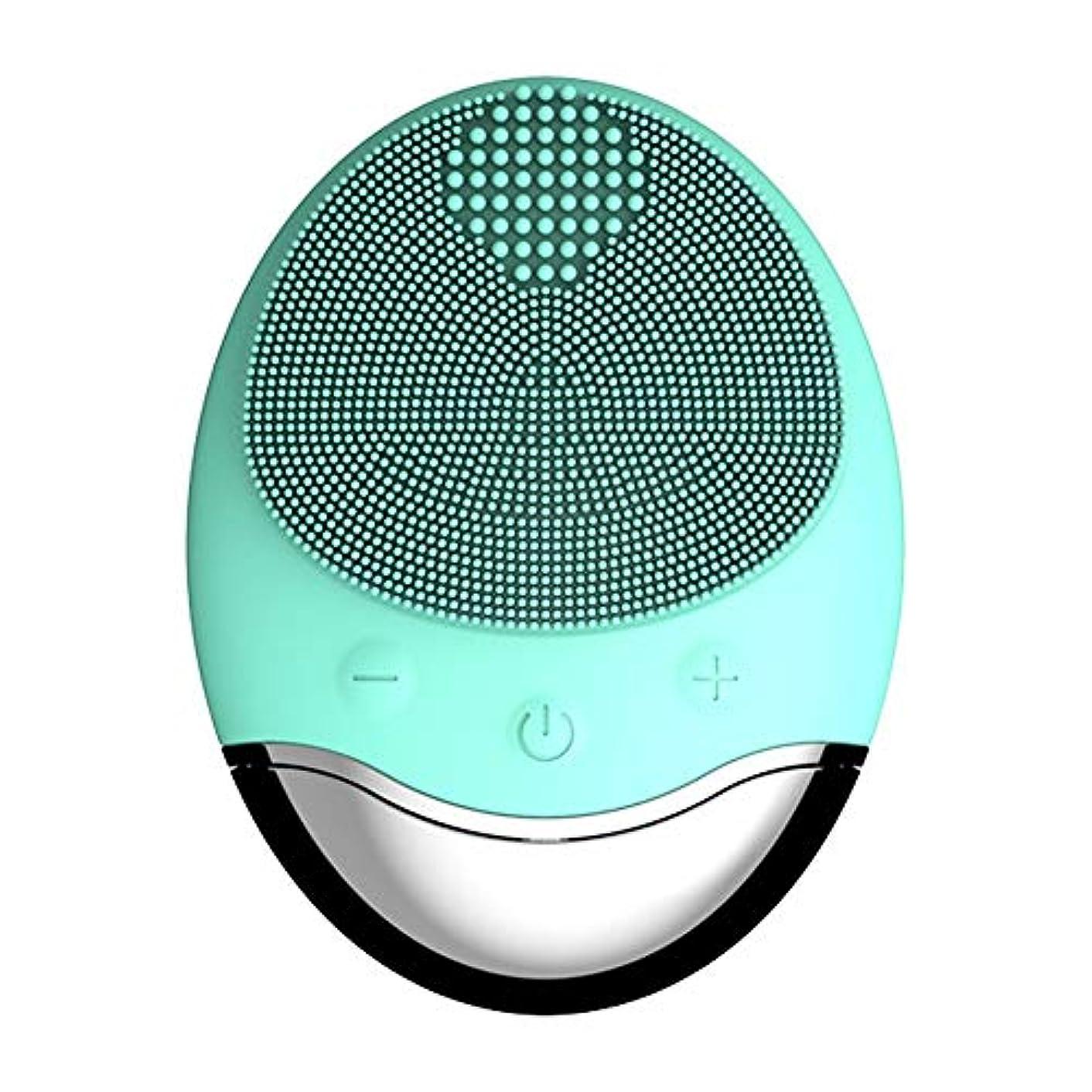 型結晶金貸しフェイシャルクレンジングブラシ-シリコンワイヤレスチャージングバイブレーションエレクトリックマッサージャー (Color : Green)