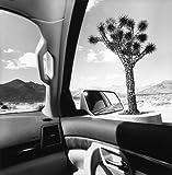 America By Car 画像