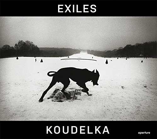Download Exiles 1597112690