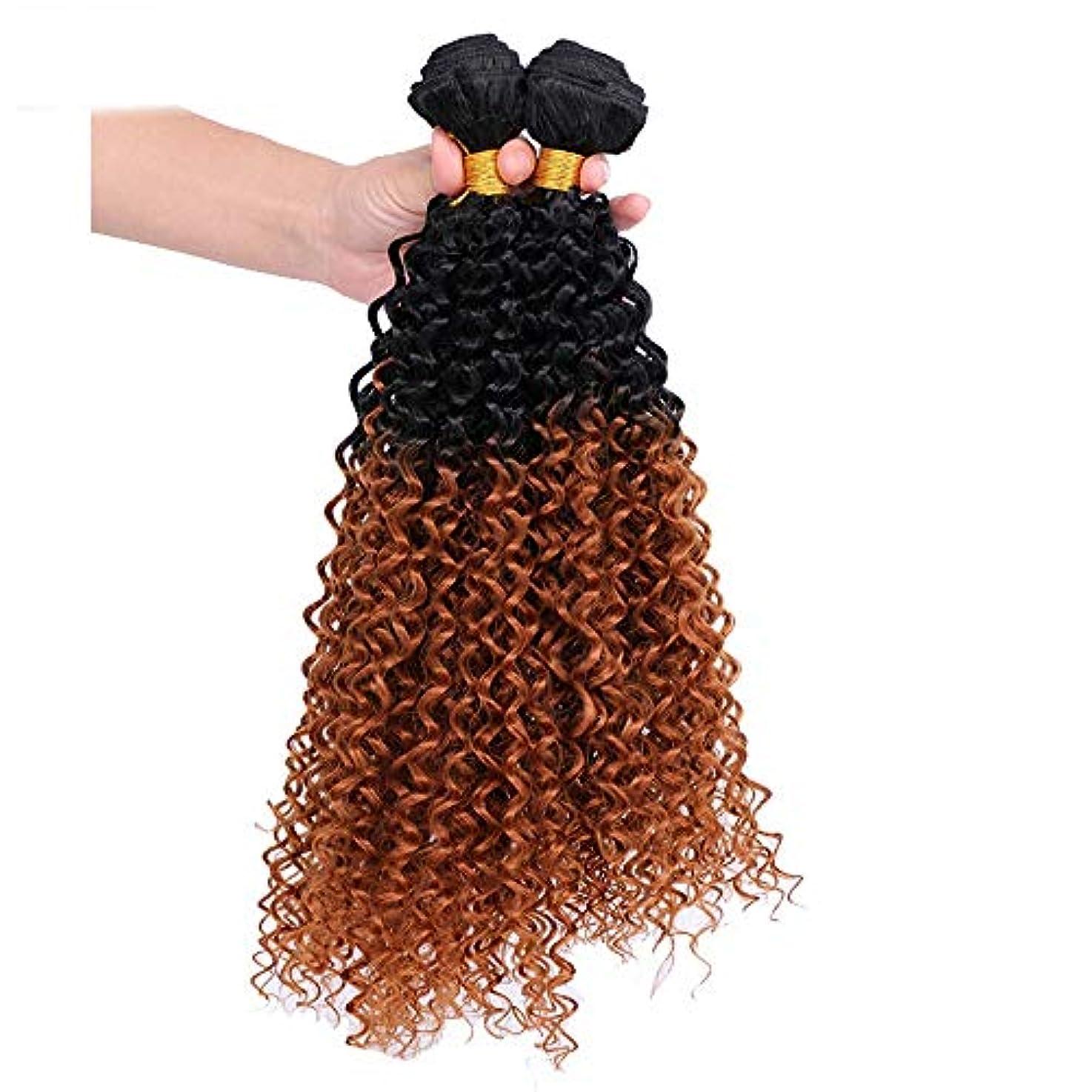 サーマル画像調整するHOHYLLYA 茶色のグラデーション巻き毛の女性のためのコスプレパーティードレス(3バンドル)合成髪レースかつらロールプレイングかつらロングとショートの女性自然 (色 : ブラウン, サイズ : 24inch)