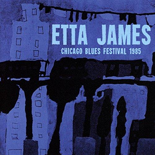 Chicago Blues Festival 1985