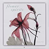 Flower Spirits 2009 Calendar 画像