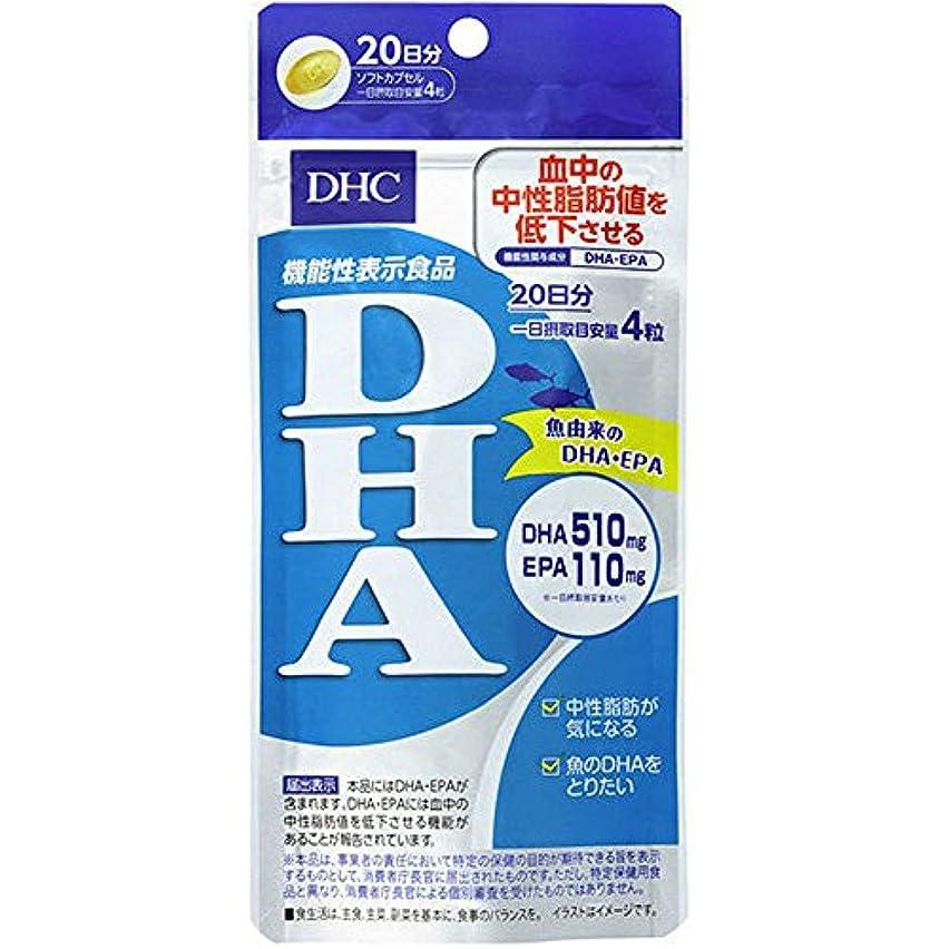 一次引っ張る議題DHC DHA 20日分 80粒 【機能性表示食品】