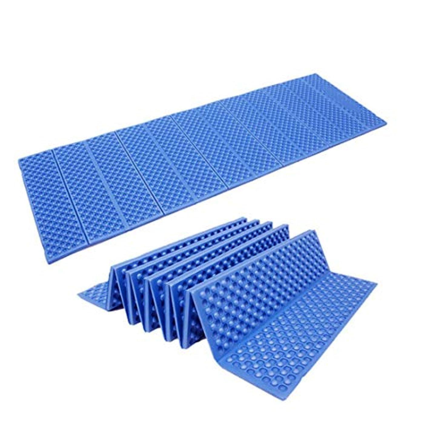 ミントニンニクカポックノウ建材貿易 自動インフレータブルクッションは厚くなったマットピクニックショーキャンプ寝床ダブルエアベッド (色 : 青)
