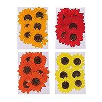 Perfeclan 約24個 自然 本物花 ひまわり 4色花 DIY工芸品 乾燥した花 カード ホビー用素材