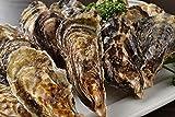 牡蠣 かんかん焼き セット 広島県産殻付き 総量約3kg 大粒LLサイズ 20~23個入 冷凍 (一斗缶 軍手 ナイフ 調理説明書付 ) 海鮮 バーベキュー セット BBQ