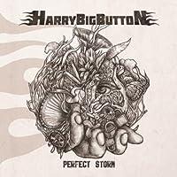 HarryBigButton - Perfect Storm (EP) (韓国盤)