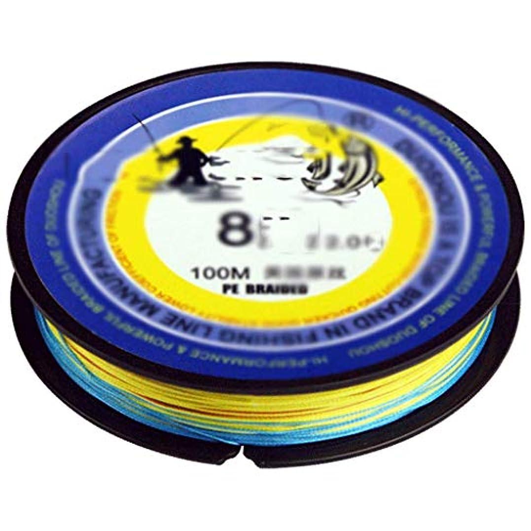 トロピカルアルプス高潔なアウトドア 釣り糸100メートル8ストランドpe編組釣り糸湖、海釣り糸、耐摩耗釣り編組線釣り (Color : Multi-colored, サイズ : 2#)