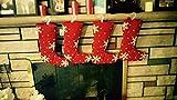 "Family Set of 4 Sparkle Snowflake 16"" Christmas Stockings by Devi Designs [並行輸入品]"