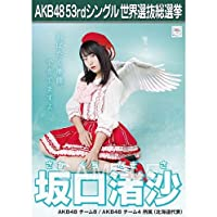 AKB48 坂口渚沙 『TeacherTeacher』劇場盤生写真 選抜総選挙ポスター仕様 チーム8