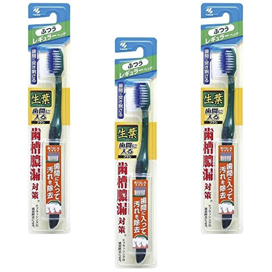 遠洋の緊張ディスク【まとめ買い】生葉(しょうよう)歯間に入るブラシ 歯ブラシ レギュラー ふつう ×3個