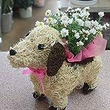 わんちゃんバスケット付き(白色の子犬M) 誕生日プレゼントやお祝い 花ギフト