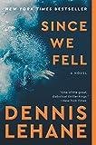 Since We Fell: A Novel