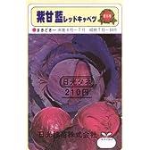 【種子】紫キャベツ [2237]