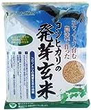 兵庫県但馬産 特別栽培米『コウノトリ育むお米』使用 コシヒカリの発芽玄米 500g