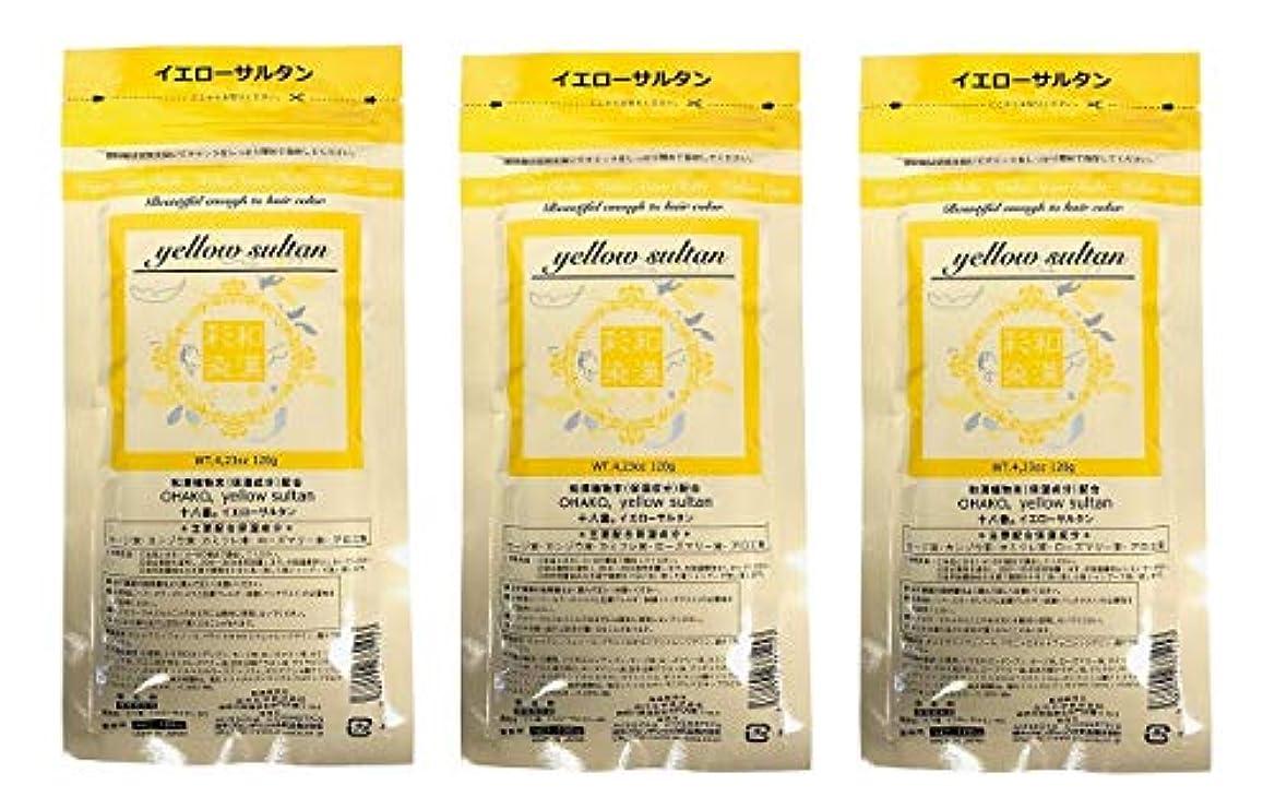 承認一掃するペストリー【3個セット】グランデックス 和漢彩染 十八番 120g イエローサルタン