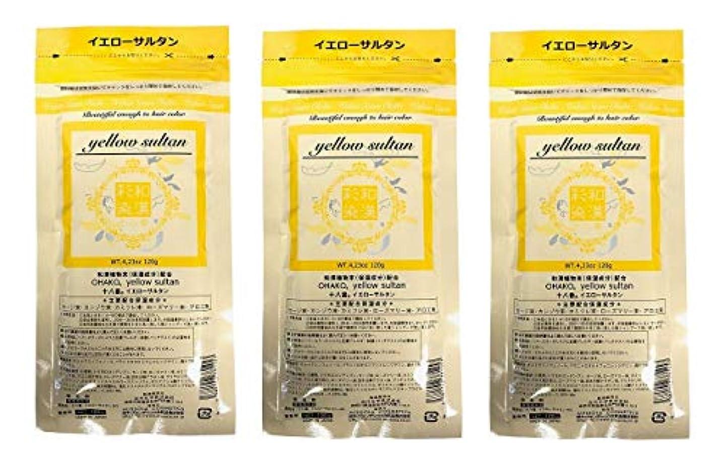 現象努力ビリー【3個セット】グランデックス 和漢彩染 十八番 120g イエローサルタン