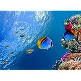 Sim、環境に優しい木製マテリアル、A GoodのためのパズルジグソーパズルPlayer 500 Piece 20.6 X 15.1インチinボックスpresent-wrap : Fishes Underwater Sealife海洋