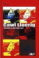 Cyfres Pen Dafad: Cawl Lloerig